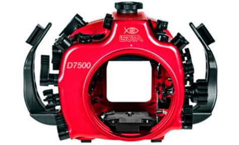 Isotta-D7500